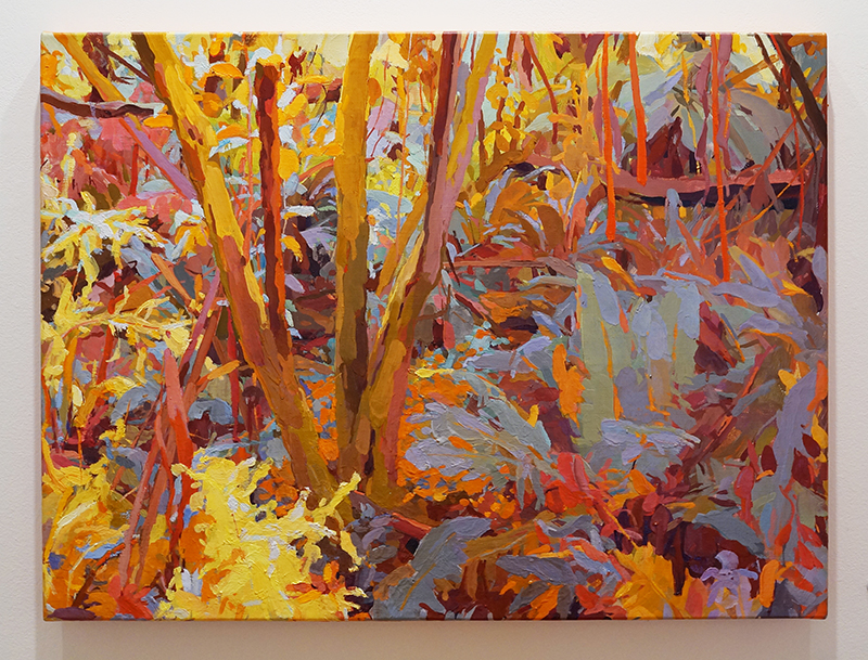 MARY TONKIN, Days like this, Kalorama 2014 oil on linen 58 x 77 cm