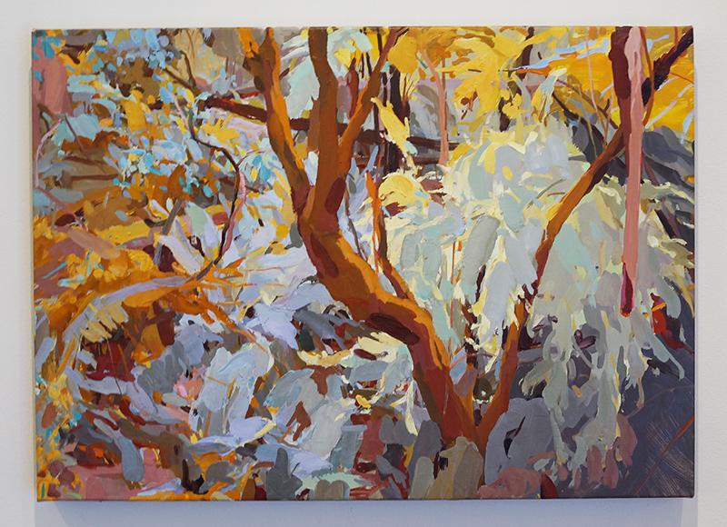 MARY TONKIN, Flow, Kalorama 2014 oil on linen 45 x 63 cm