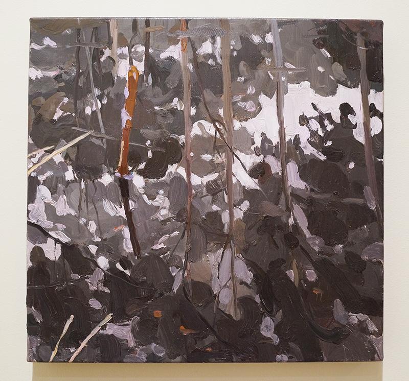 MARY TONKIN,Totem, Kalorama 2009 oil on linen 36 x 36 cm6